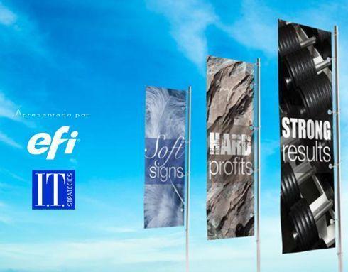 EFI e IT Strategies desenvolveram o material