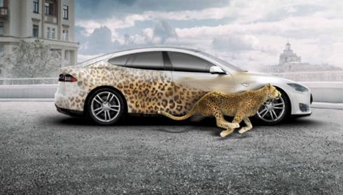 Mídia foi projetada para facilitar envelopamentos de carro