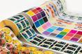 Nova seção dedicada à impressão digital de embalagens, rótulos e etiquetas